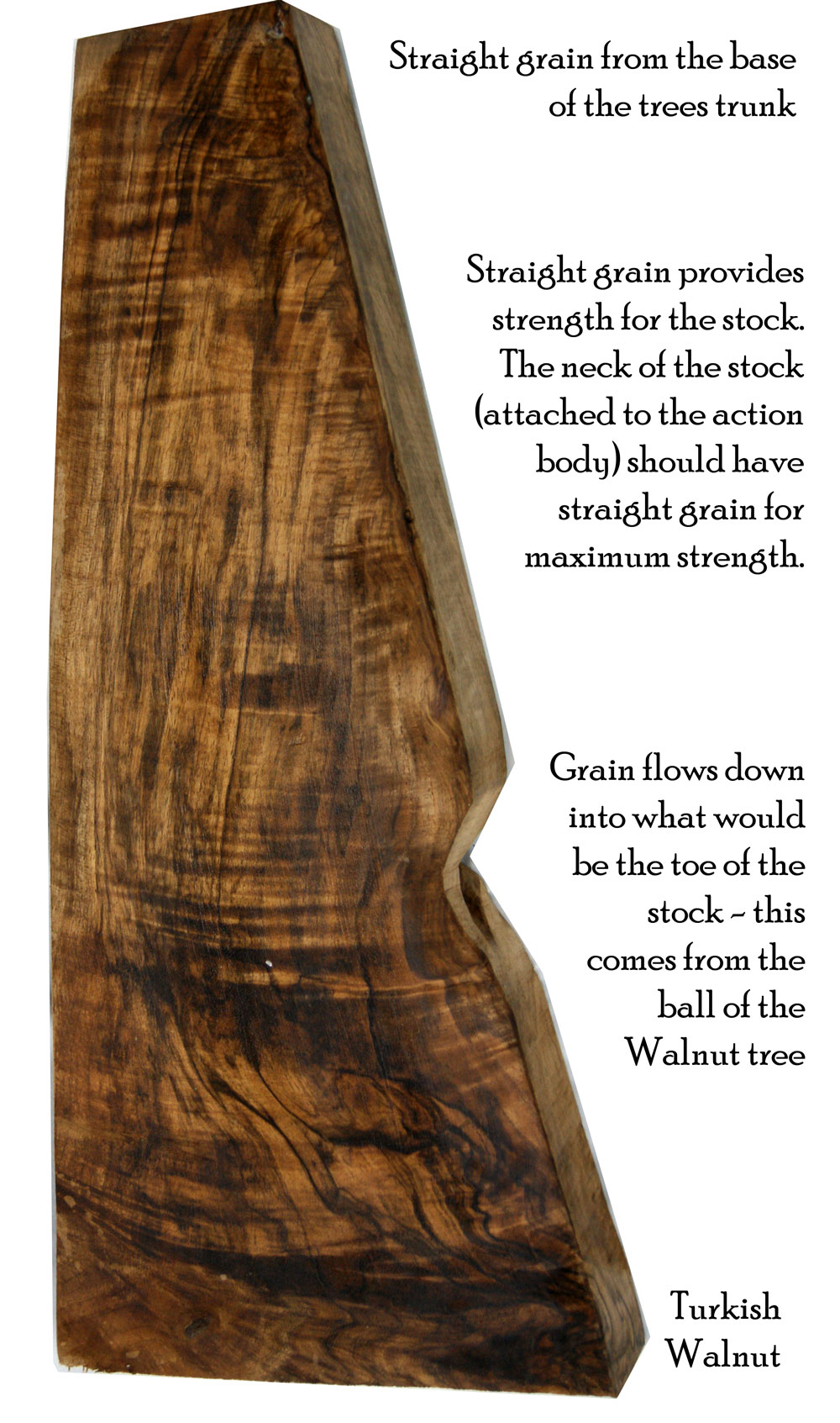 diagram-of-stock-blank walnut shotguns British made bespoke